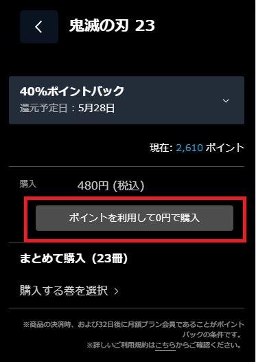 確認画面にて視聴期限と利用ポイントを確認し、「ポイントを利用して〇〇円でレンタル」ボタンをクリック